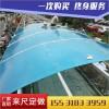 鹤岗湖蓝色阳光板-屋面装饰PC板多少钱