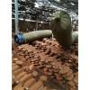 西安破壁灵芝孢子粉生产厂家